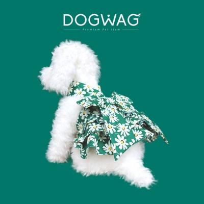 [도그웨그 DOGWAG] 댕댕이 홀터넥 패턴 원피스