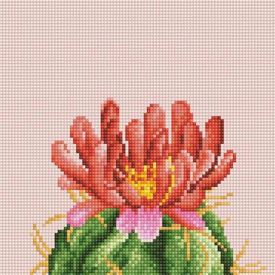 꽃을 품은 선인장 3 (캔버스형) 보석십자수 25x25