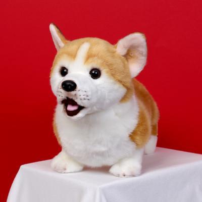 이젠돌스 위더펫 리얼 강아지 인형 장난감 웰시코기