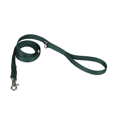 basic deepgreen lead