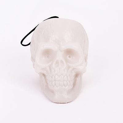 플라스틱 점등해골모형
