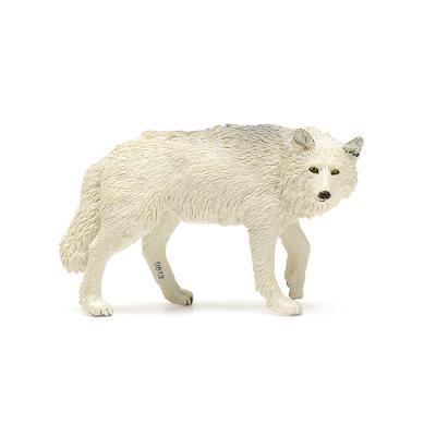 220029 북극늑대 White Wolf