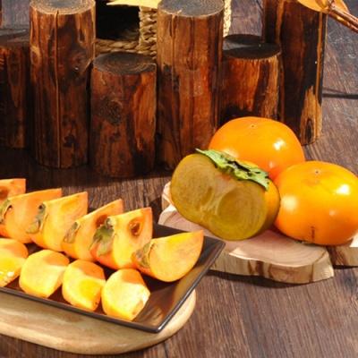 가을과 함께 익어가는 햇단감(대) 4kg/16~21과