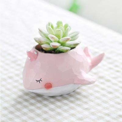 ROOGO 루고화분 조각조각 핑크고래