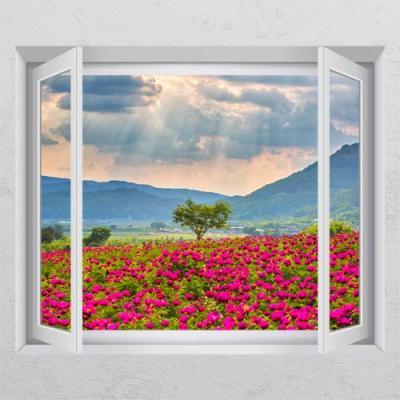 ps522-풍수작약꽃밭_창문그림액자