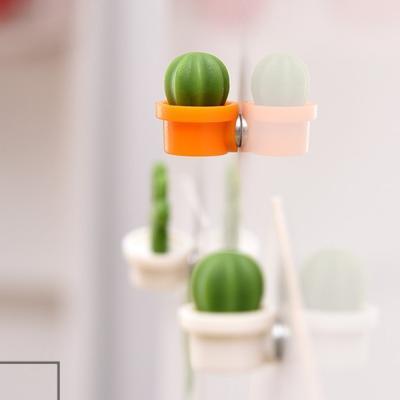 파베르 선인장 냉장고자석 6p세트 마그네틱