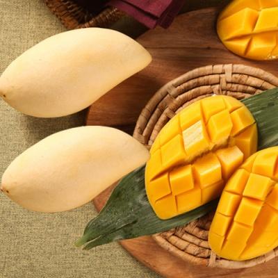 [Sweet Mango] 달콤함 가득 카라바오 망고 3kg/12과