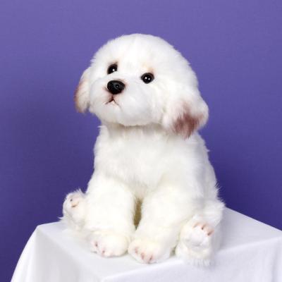이젠돌스 위더펫 리얼 강아지 인형 장난감 말티즈