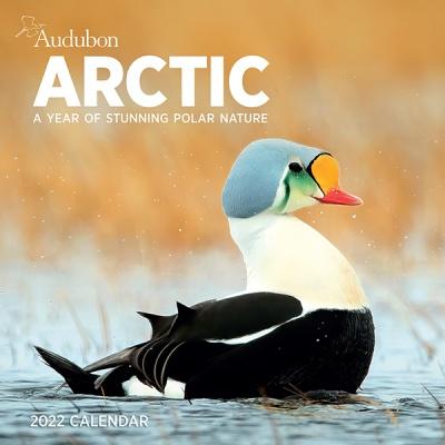 2022 캘린더 Audubon Arctic