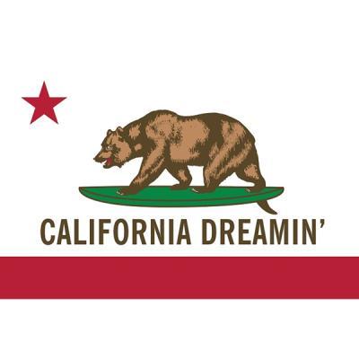 160702 캘리포니아 Dreamin (91x 61)