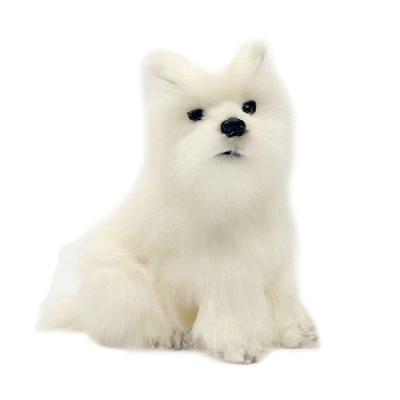 4127번 웨스트하이랜드테리어 Dog West Highland Terrier
