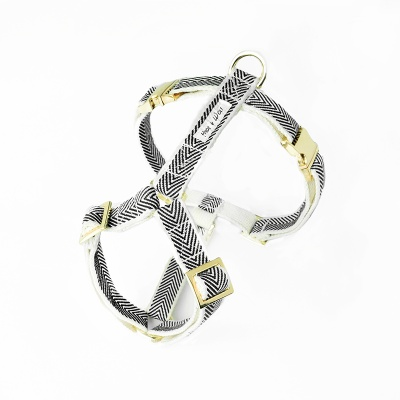 BLACK COBY GOLD HARNESS
