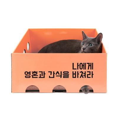 [노리노리캣] 카펫 스크래쳐 박스 (피치)