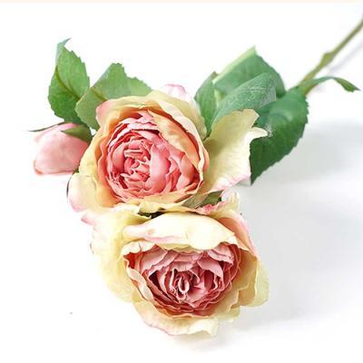 Flower Silk 캐비지장미 조화 6color 40x15cm