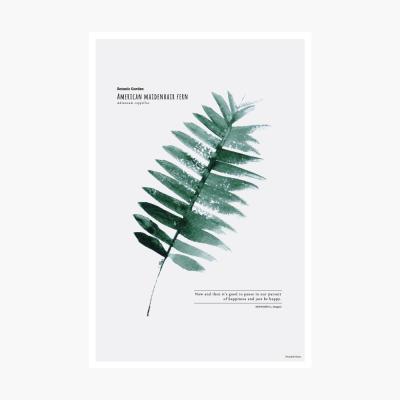 보타닉가든 포스트카드-American maidenhair fern