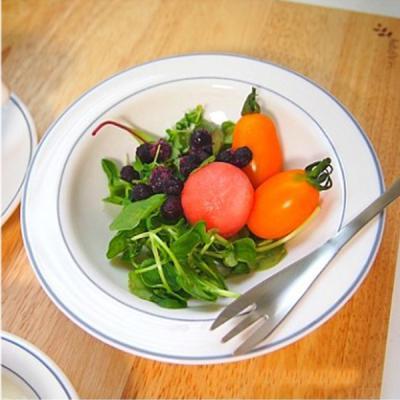 [알코록 프랑스] 쿠푸(대) 샐러드 접시 (16cm)