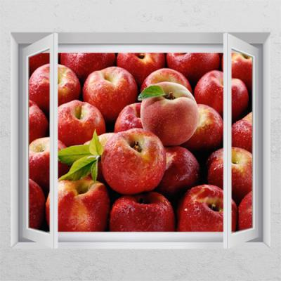 ac183-재물의촉촉한사과_창문그림액자