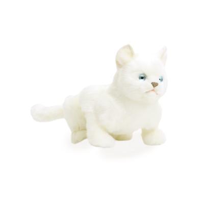 4586 파란눈 흰색고양이/38cm.L
