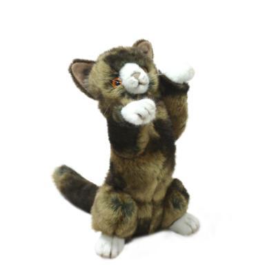 5041번 고양이갈색 Playful Kitty/25cm.H