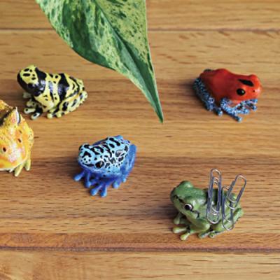 [MAGNET] 개구리 자석 클립 홀더