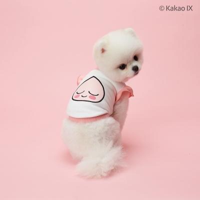 카카오프렌즈 댕댕이 맨투맨 강아지옷