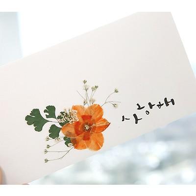 [압화현금봉투-자몽빛수선화]한지현금봉투 용돈봉투