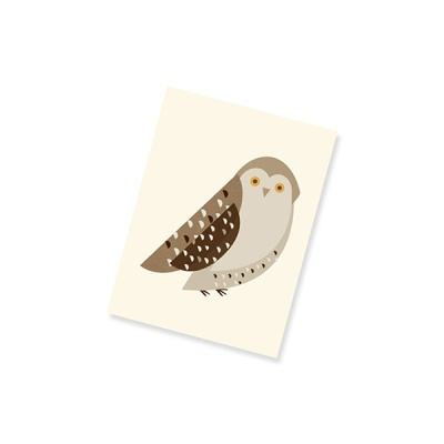 Nature's friends Notebook_Owl