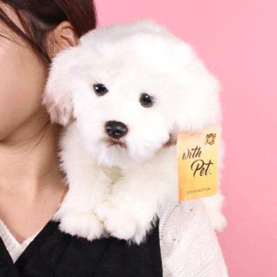 진짜같은 말티즈 강아지인형 25cm 갓샵 동물 애착인형