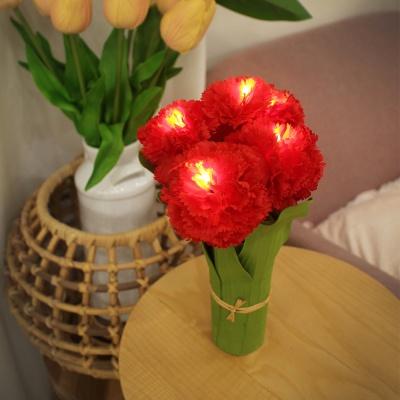 카네이션 LED 무드등 - carnation LED lights