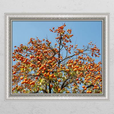 tl385-풍수재물복의감나무2_창문그림액자