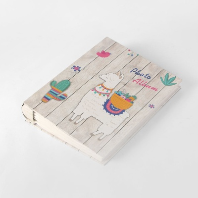드림캐치 포켓식 포토앨범(50매)