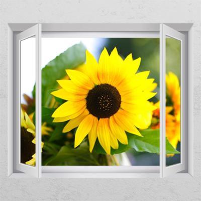 cr605-꽃병속해바라기_창문그림액자