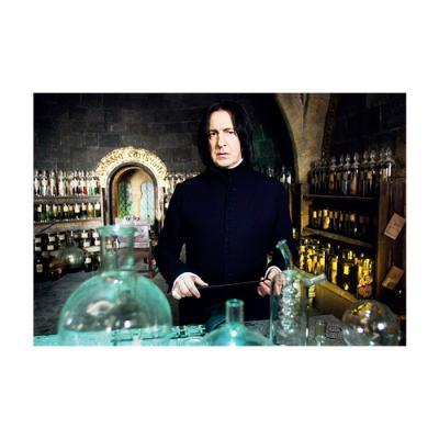 해리 포터 홀로그램 엽서 5:스네이프 교수