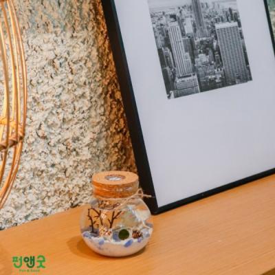 수경재배 반려식물 마리모 어항  LED항아리 선물세트
