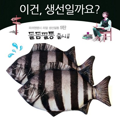 ★무료배송 [피쉬앤팬시] 생선필통 돌돔필통