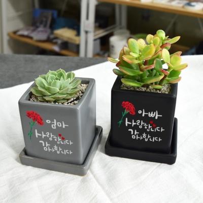 [카네이션_감사메세지 ] 캘리그라피 컬러미니화분