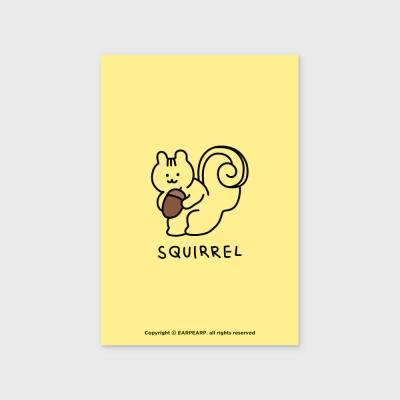 Squirrel(엽서)