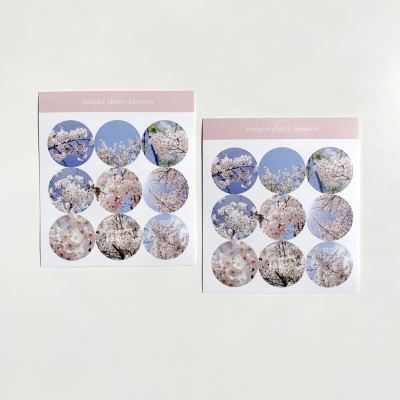 밍키트 벚꽃 원형 스티커