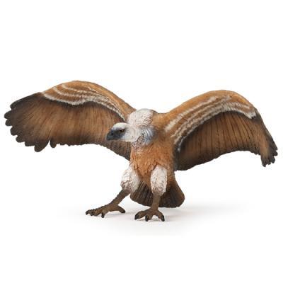 [papo] 대머리 독수리