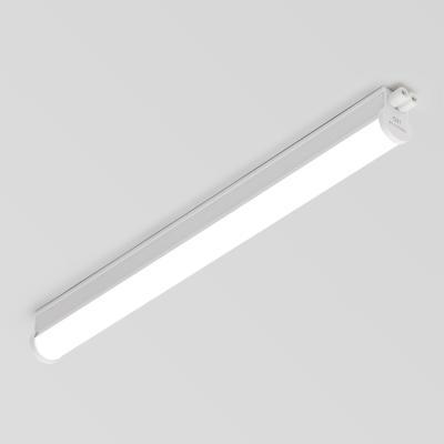 비바 LED T5 600mm (스위치포함)