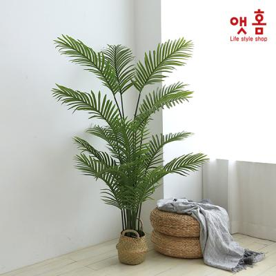 앳홈 가든 아레카캄 야자나무 170cm
