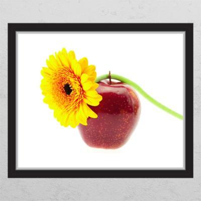 cl479-빨간사과와해바라기_창문그림액자