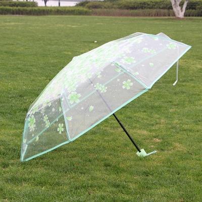 꽃비 투명우산 / 3단 접이식우산