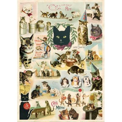 카발리니 포스터-Cat Collage
