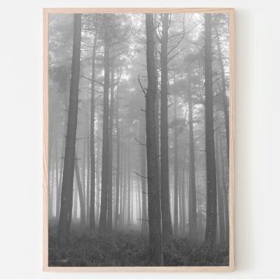 안개의숲 사진포스터