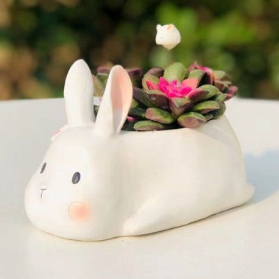 ROOGO 루고 다육이 화분 행복한 동물일기 토끼