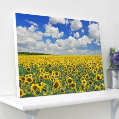 ga702-캔버스액자33.4x24.2_해바라기꽃풍경