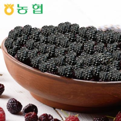 [서순창농협] 슈퍼푸드 순창 햇복분자 5kg