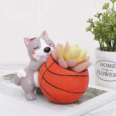 ROOGO 루고화분 강아지 스타디움 농구