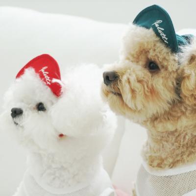 유아러피치 팔레트스냅백 _강아지모자 애견스냅백
